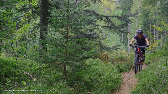 Mystik-Trails (Foto: Wolfgang Neumüller)