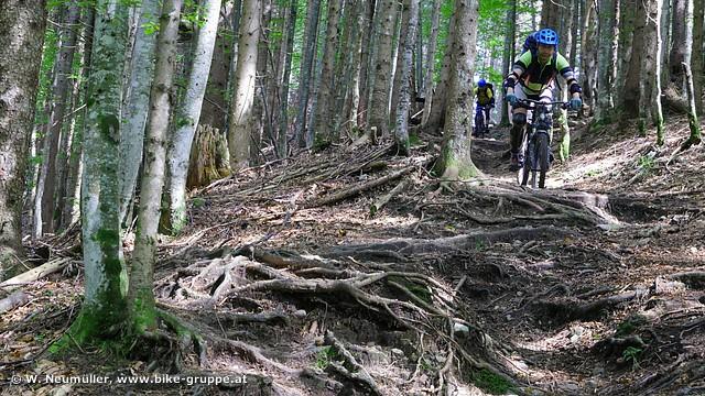 Weissensee-Trails (Foto: Wolfgang Neumüller)